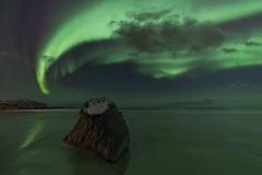 Rockin' the Aurora